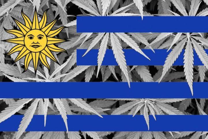 Uruguay marijuana flag